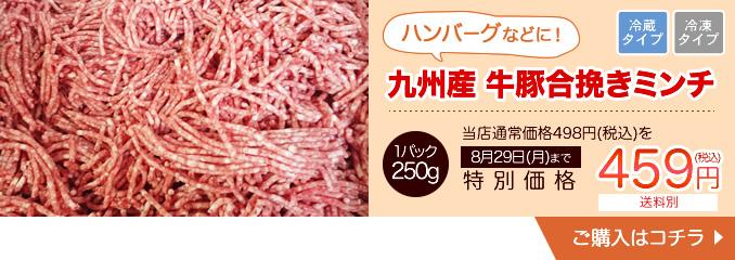 九州産 牛豚合挽きミンチ 250g【10810】