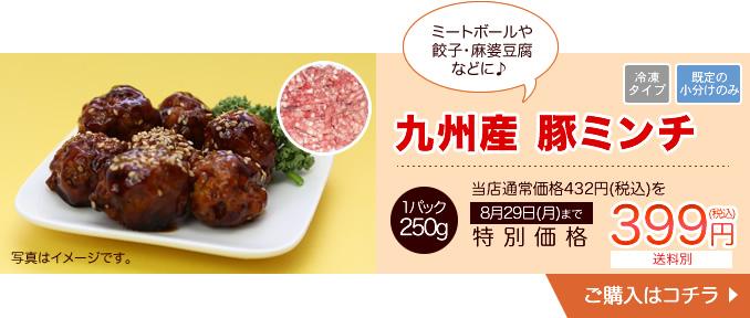 大分県産 豚ミンチ 250g【20010】
