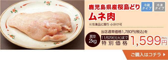 鹿児島産若どり桜島どりムネ肉 冷凍便に限り小分け可【34000】