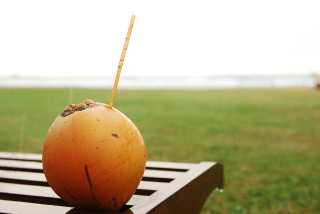 ココナッツオイルの効能