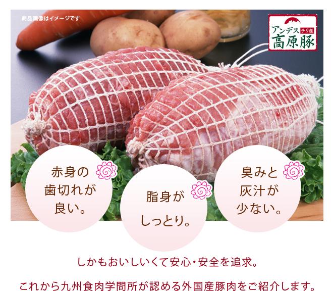 アンデス高原豚紹介